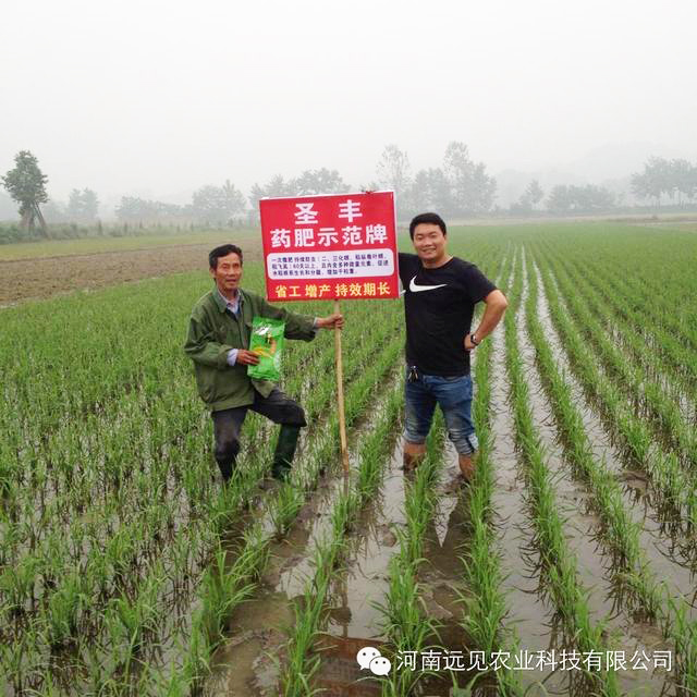 Land transfer promotes new agrochemical marketing means - technology marketing